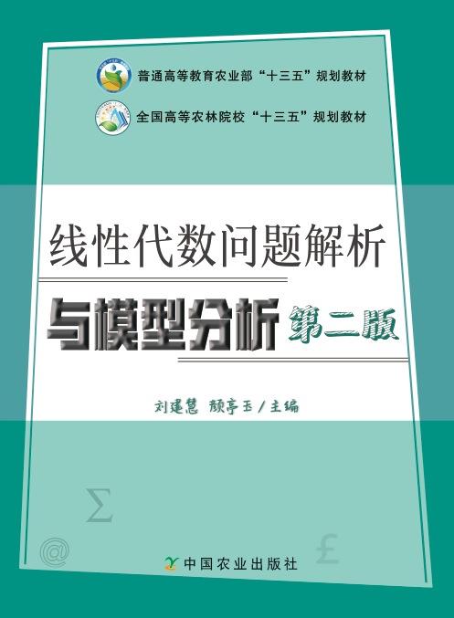 线性代数问题解析与模型分析第二版